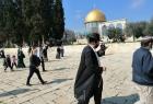 (407) مستوطناً اقتحموا ساحات المسجد الأقصى الأسبوع الماضي