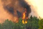 حرائق الغابات تفتح نيران المعارضة ضد أردوغان - فيديو
