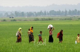 """محاولة جديدة لإعادة لاجئي الروهينغا إلى """"ميانمار"""""""